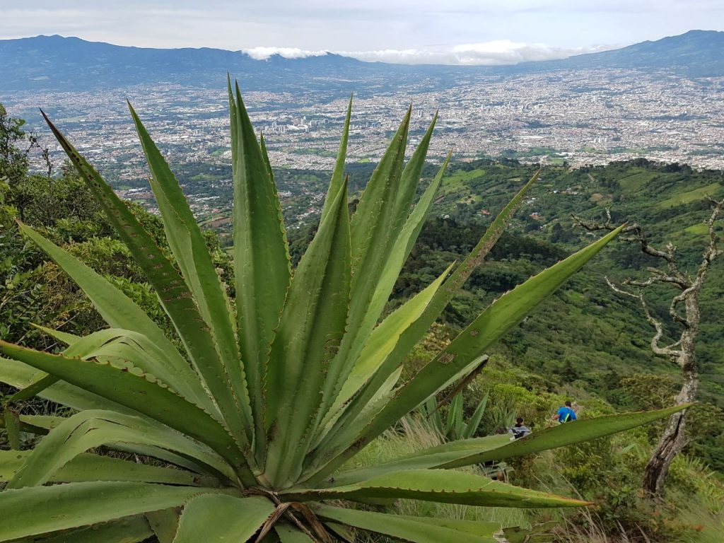 Pico Blanco Costa Rica Hike
