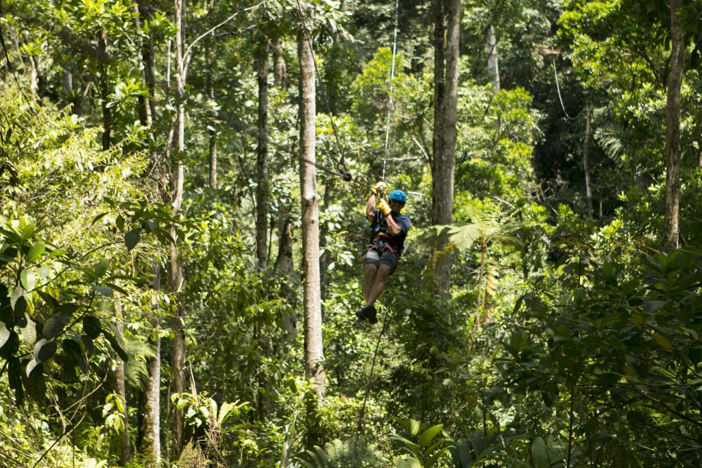 Canopy tours are run by the Rios Tropicales lodge
